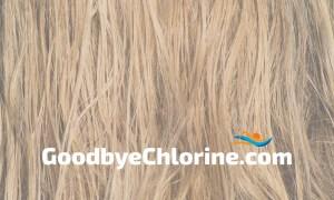 swimmer hair care