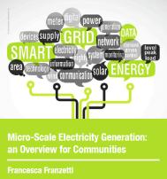 Microgeneration report