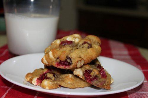 Cranberry Treasure Cookies