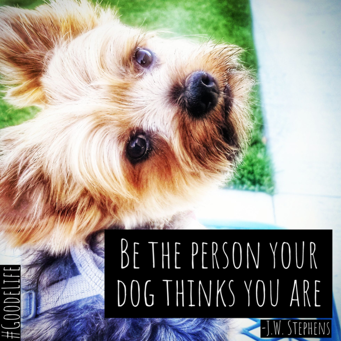 Be the person your dog thinks you are - JW Stephens