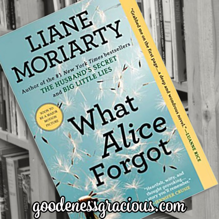 What Alice Forgot by Liane Moriarty is one of my favorite contemporary fiction reads. This thought provoking story is entertaining, a little mysterious and rich with meaning.