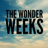 The Wonder Weeks - Mental Leaps and Predictable Fussy Periods