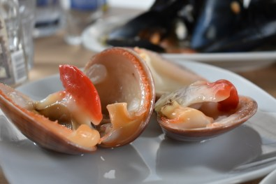 tsipouro zeevruchten