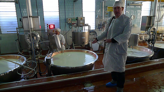 Good Food Revolution's Jamie Drummond observes the Parmigiano Reggiano production process in Emilia-Romagna.