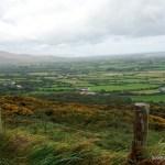 Wild Rover: An Irish Barroom Ditty