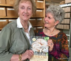 "Maxine Stone writer of ""Missouri Wild Mushrooms"""