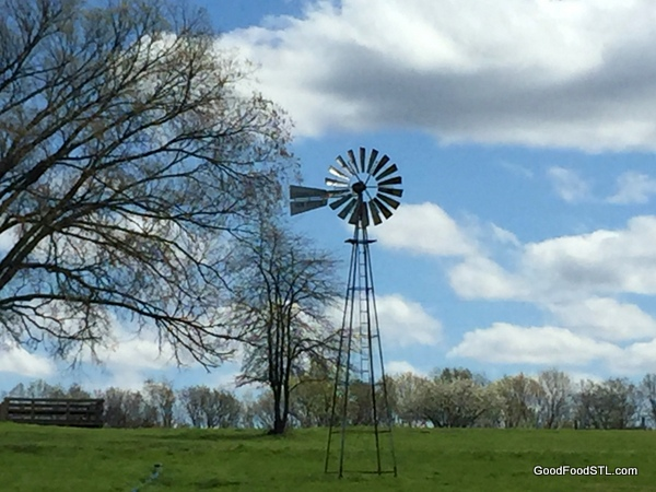 A vintage windmill at Dry Fork Farms