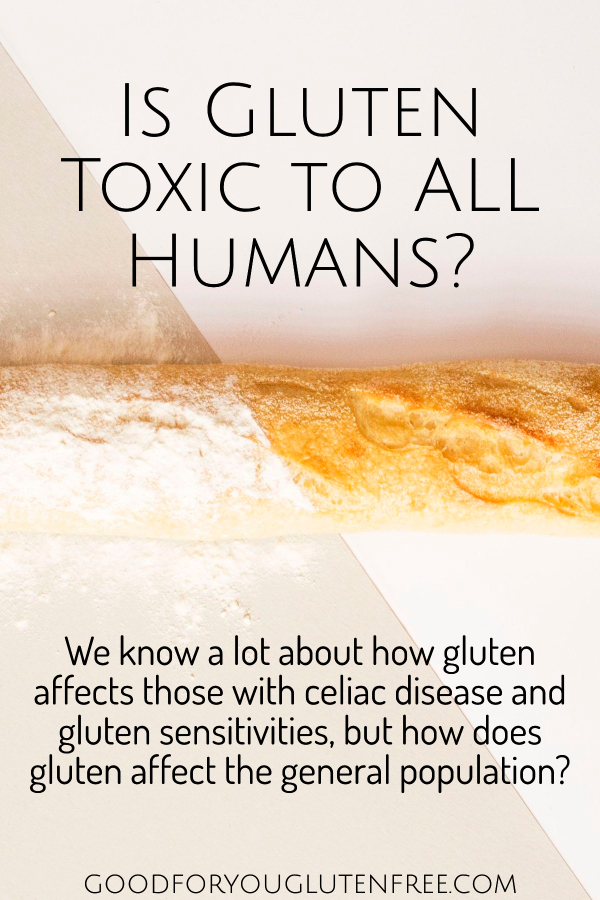 Is Gluten Toxic to All Humans_ Good For You Gluten Free