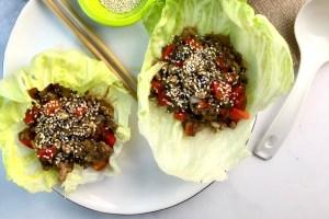 Gluten-Free Mushroom and Chicken Lettuce Wraps header