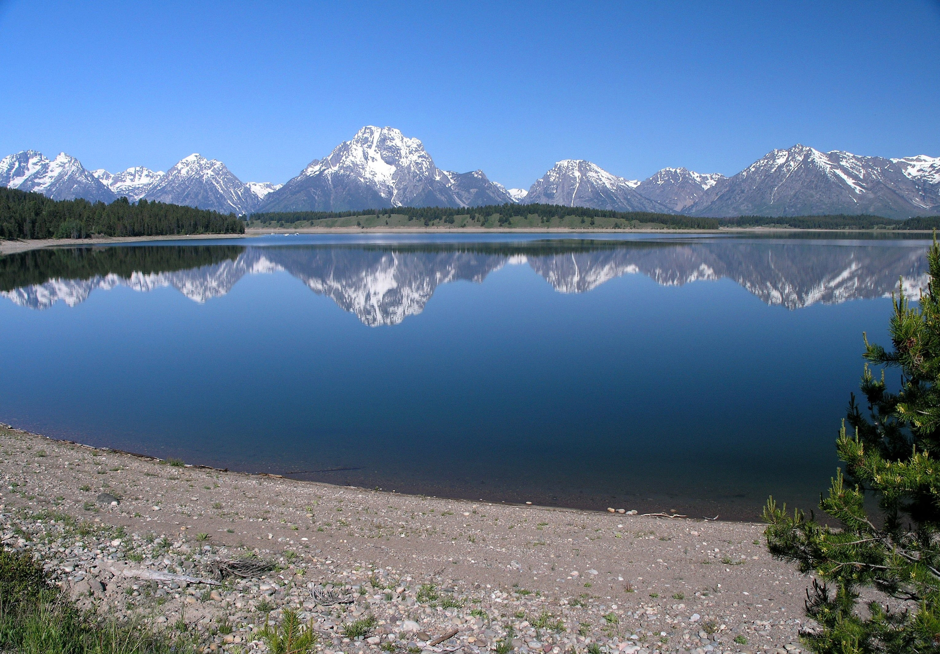 Jackson Lake Landscape In Grand Teton National Park