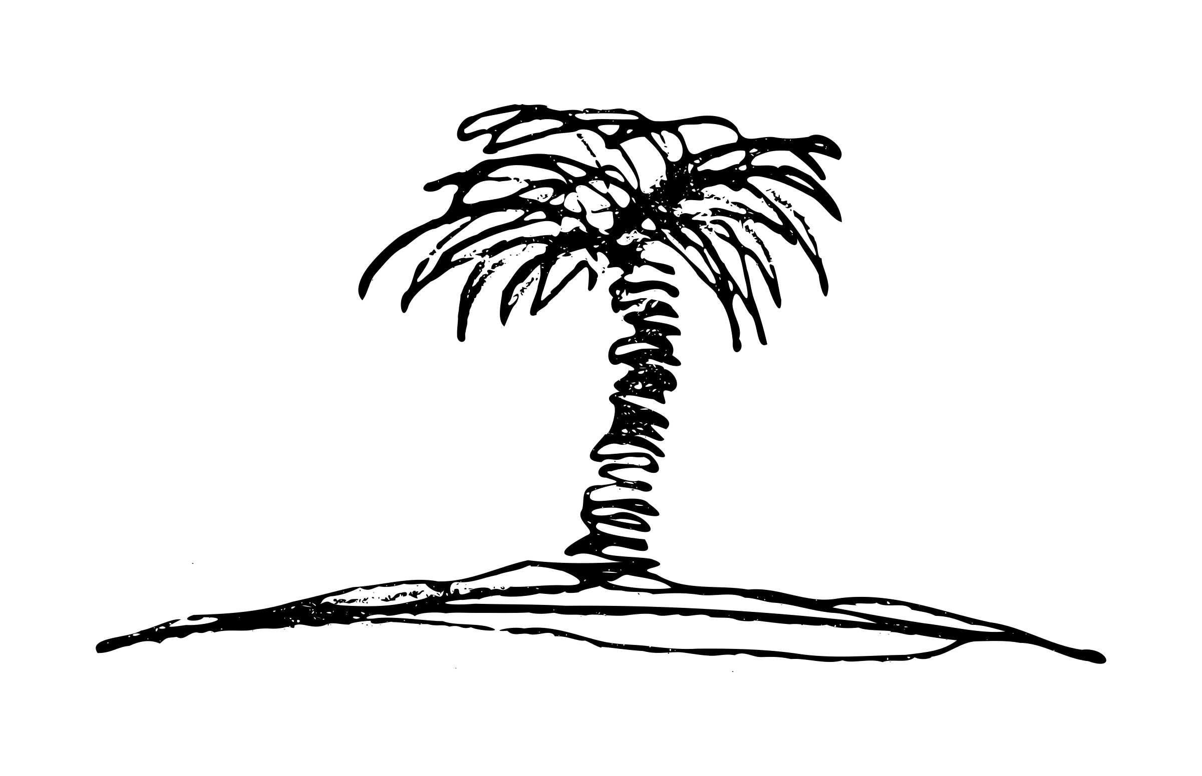 Palm Tree Sketch Vector Clipart Image