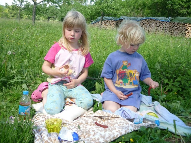 Tips voor kinderactiviteiten in de tuin-picknick-GoodGirlsCompany