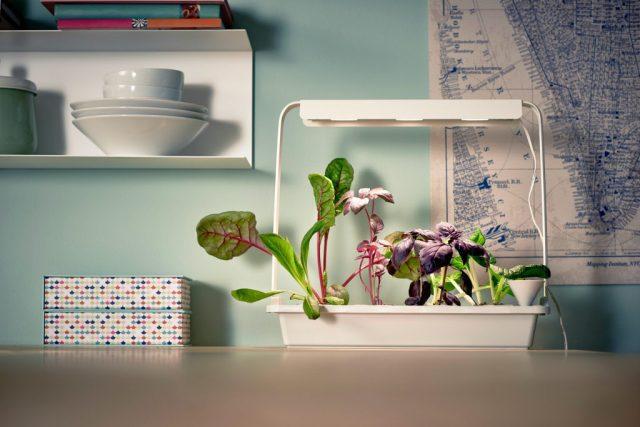 IKEA hydrocultuur kweeksets-ikea moestuintje-zelf groentes kweken-Goodgirlscompany