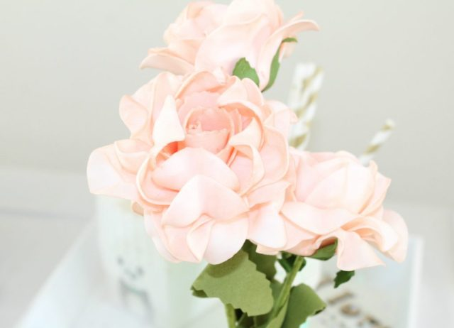 Action shoplog-GoodGirlsCompany-mint peach