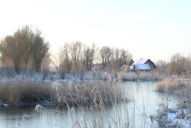 Arnhem-wonen-GoodGirlsCompany