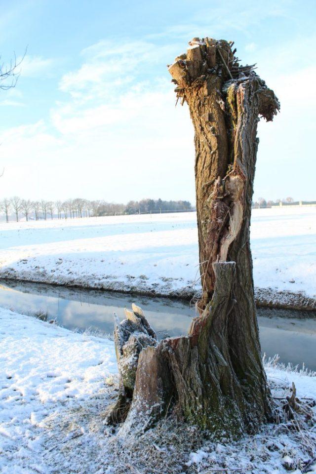 sneeuw-in-arnhem-GoodGirlsCompany