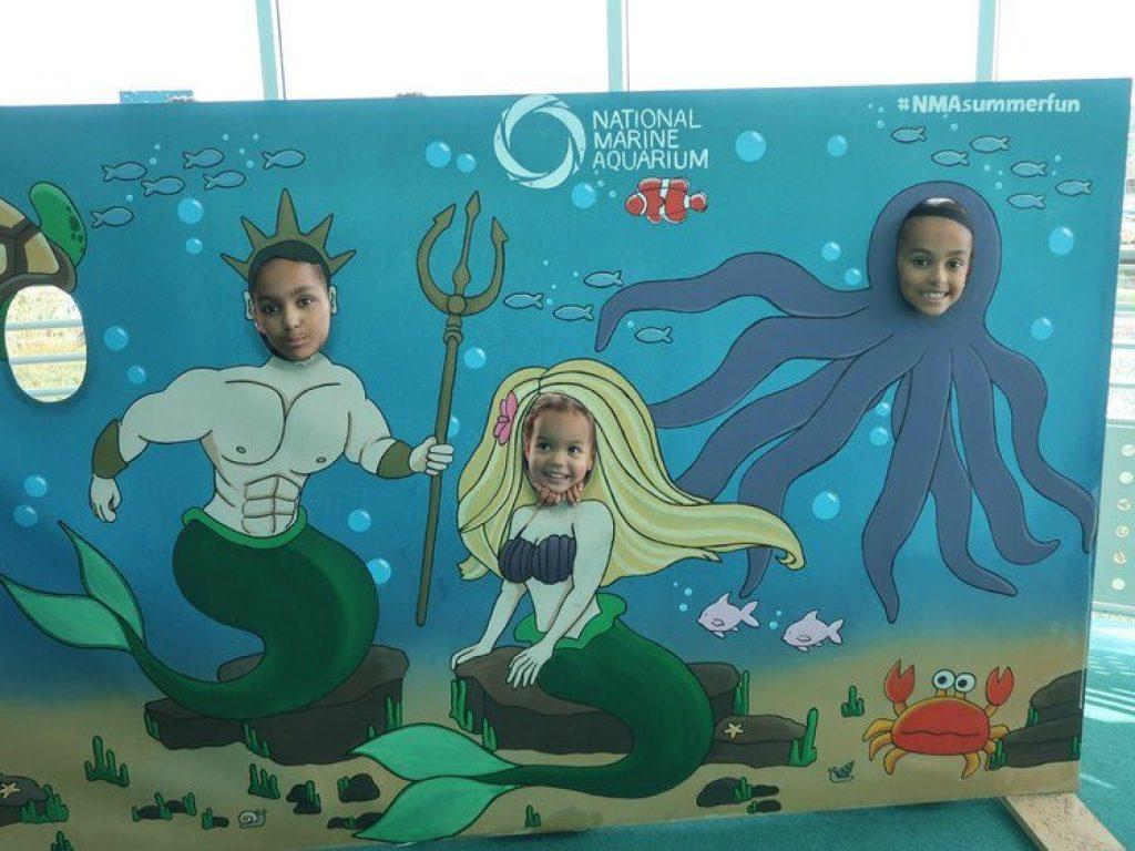 National Marine Aquarium summer fun