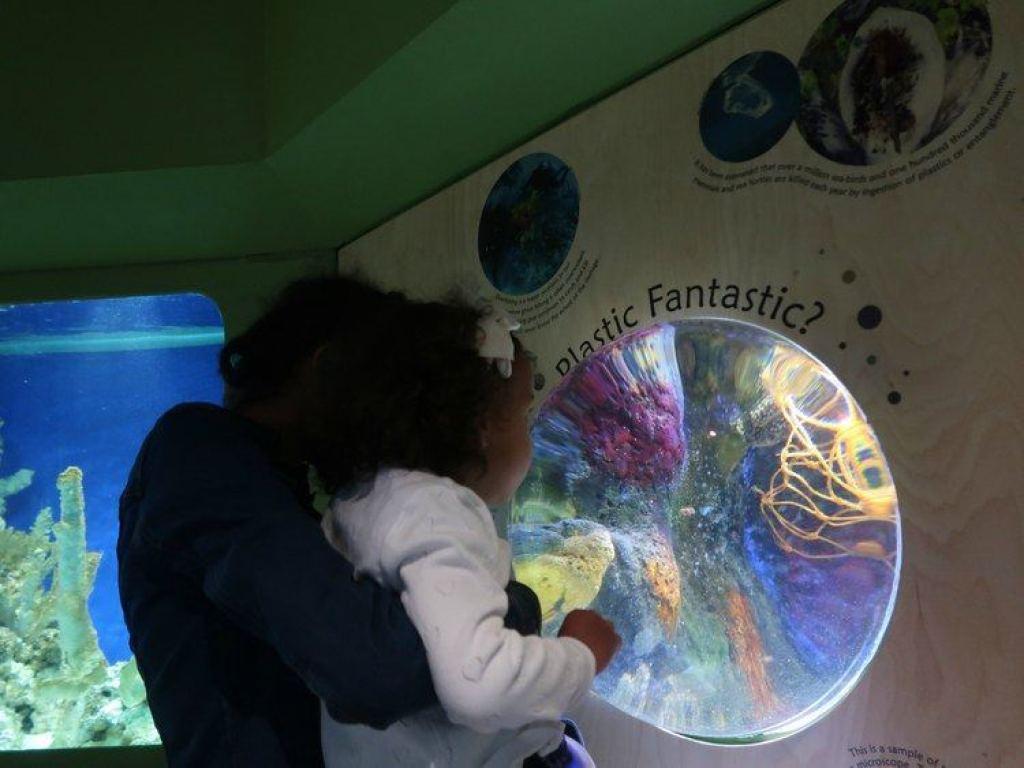 bezoek National Marine Aquarium