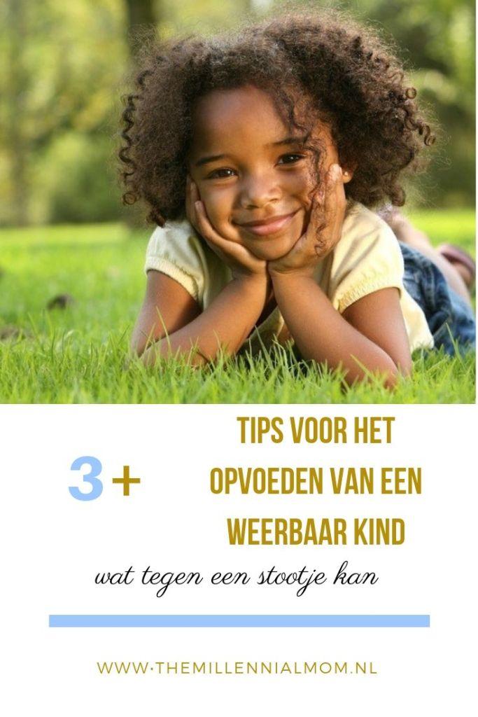 tips opvoeden weerbaar kind