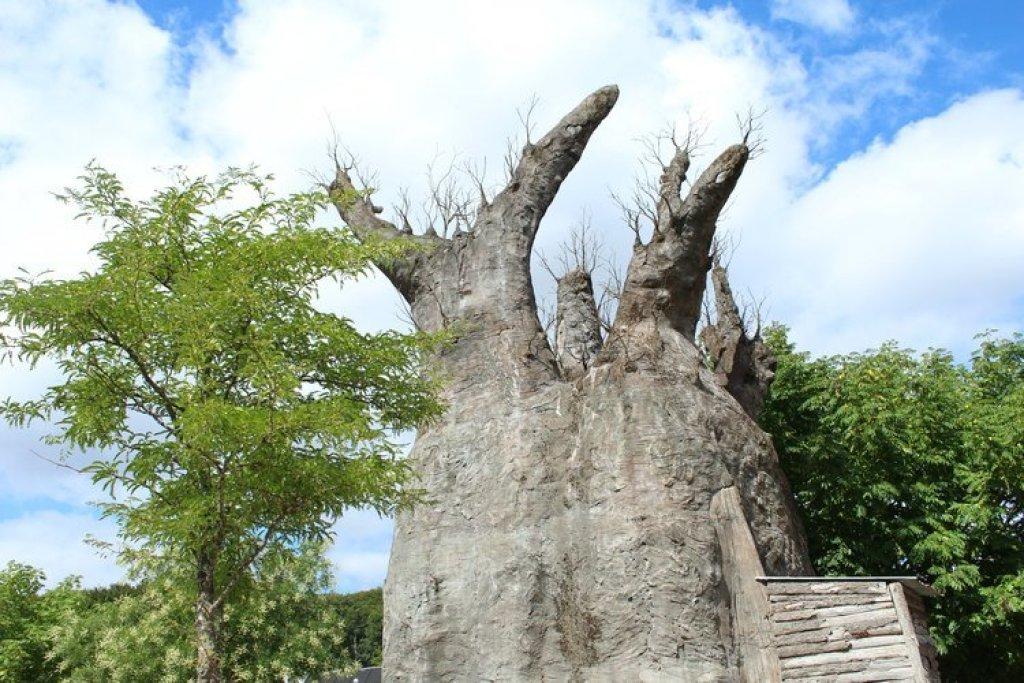 baobab aalborg dierentuin