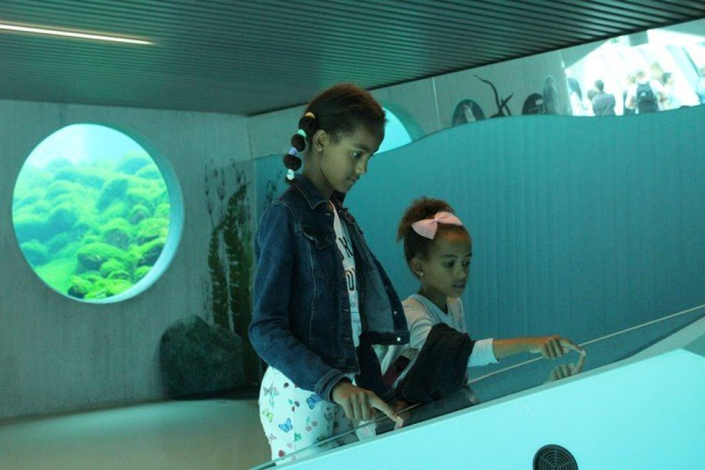 Met kinderen naar het Nordsøen Oceanarium