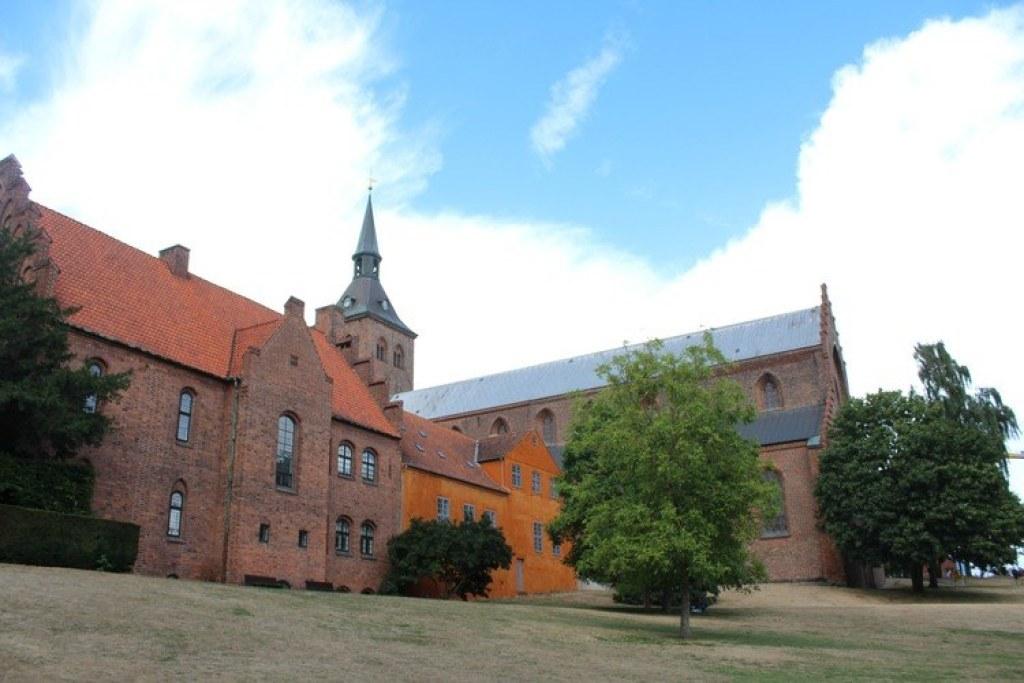 de Dom van Odense