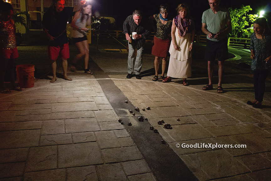Crab Race Night at Turquoise Bay Resort Roatan Honduras