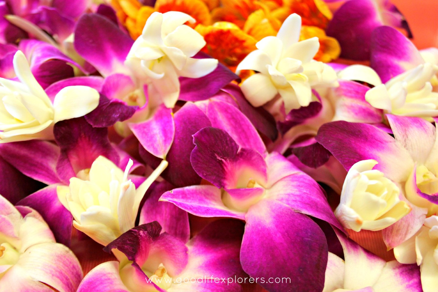 Travel Moment: Lei Making Class