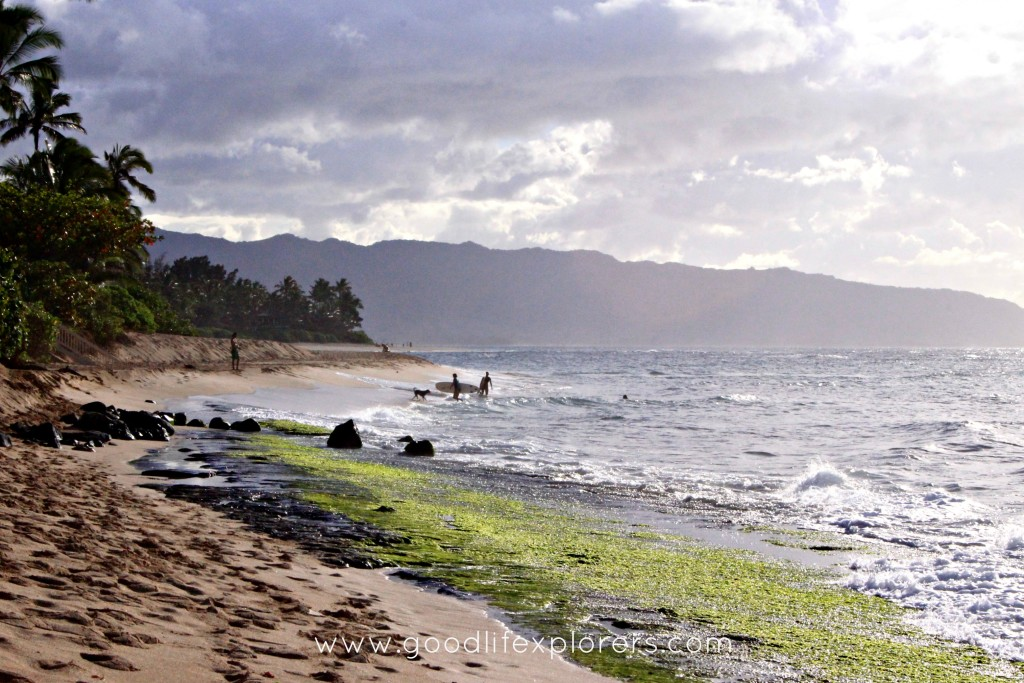 North Shore beach and surfers Oahu Hawaii