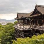 Kyoto, Travel, Japan, culture, temple, Kiyomizudera