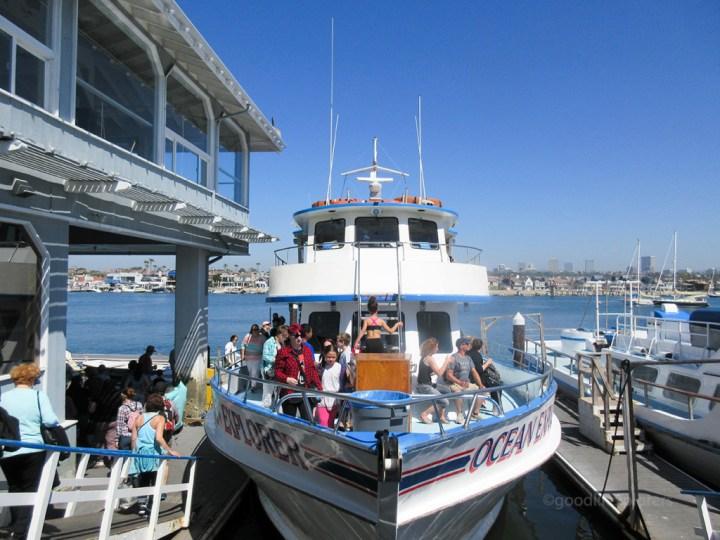 Davey's Locker whale watching Tour boat