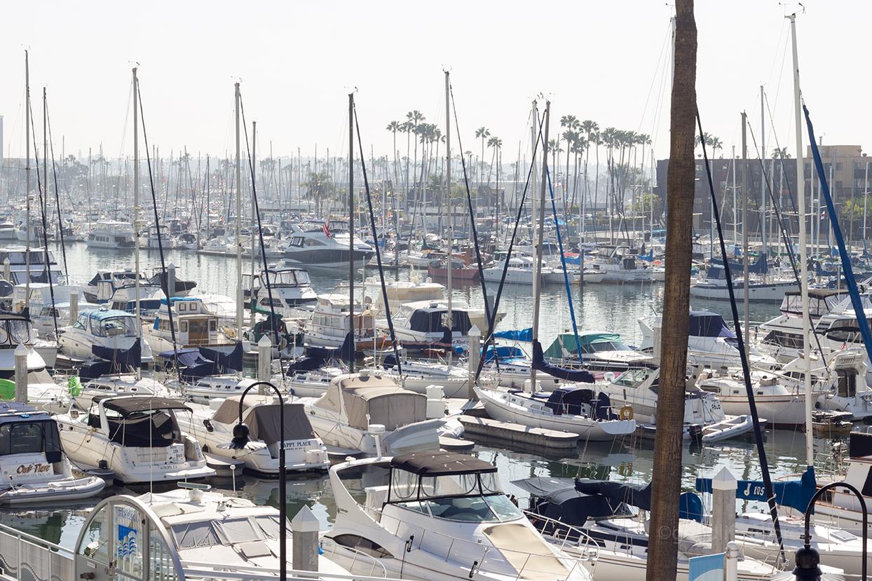 Marina del Rey Boats in the Marina