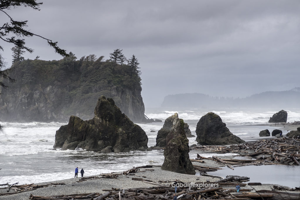 Ruby Beach landscape in Olympic National Park