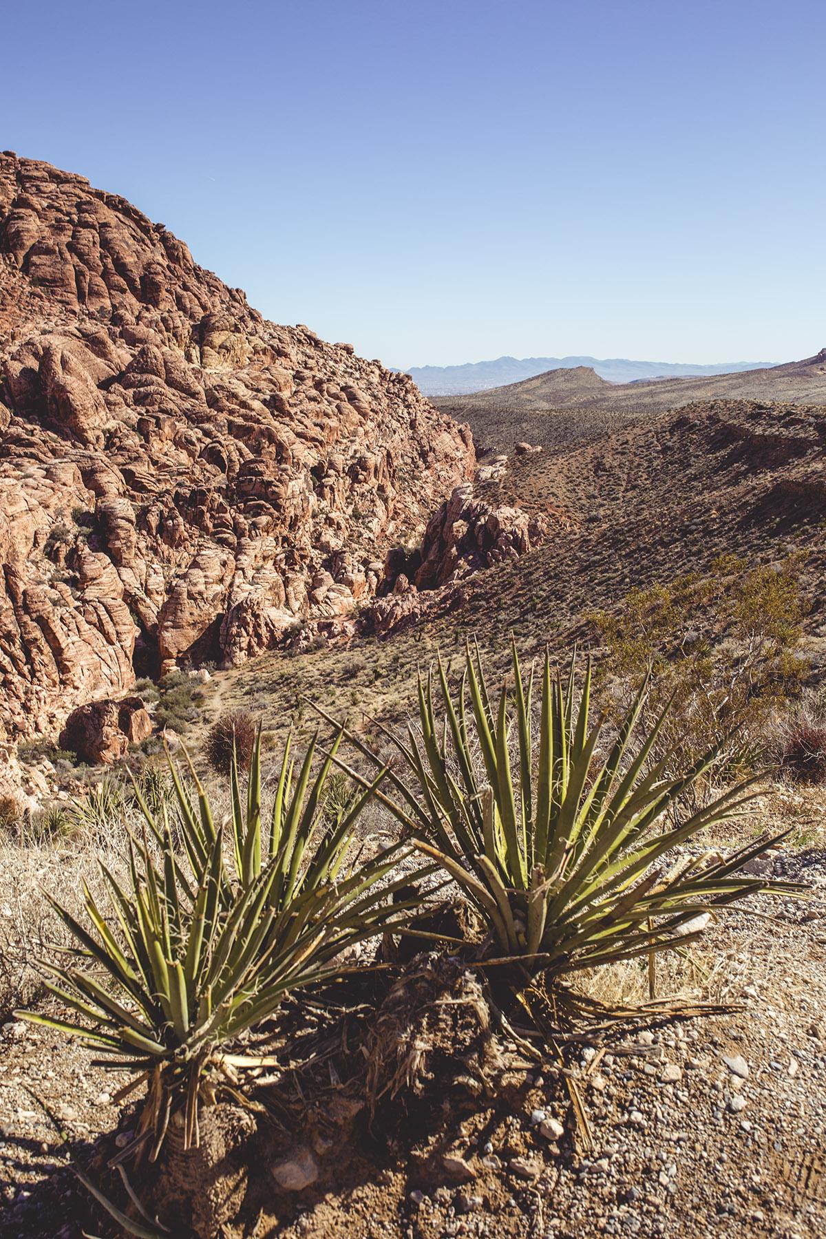 Red Rock Canyon in Las Vegas
