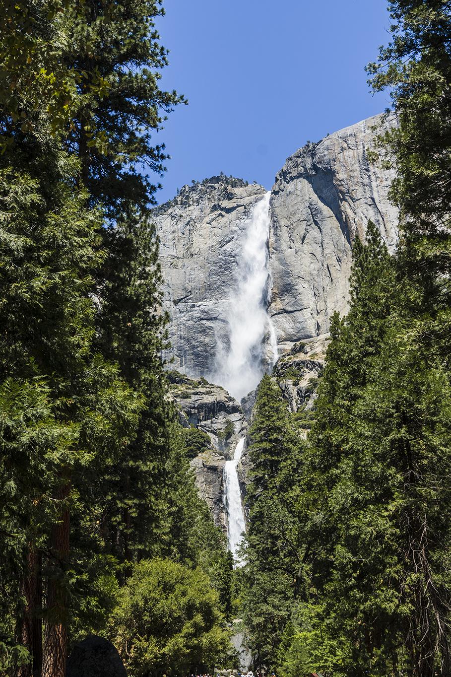 Lower Yosemite Falls in Yosemite valley California