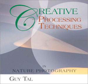 Creative Processing Techniques-Guy Tal