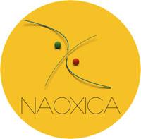 logo Naoxica petit