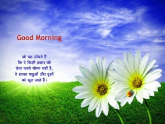 New Good Morning Quotes Wallpaper Download