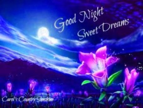 goodnightwallpaperdownload - scoailly keeda