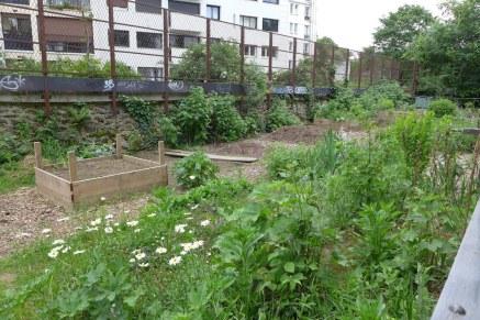 La Petite ceinture - Paris - The community garden