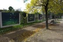 Jardin des Plantes-Paris-Expo photos