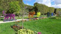 Jardin des Plantes-Paris-Flowers