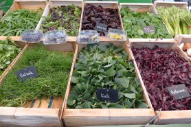 Marche-Saxe-Breteuil-Paris-Various herbs and leaves