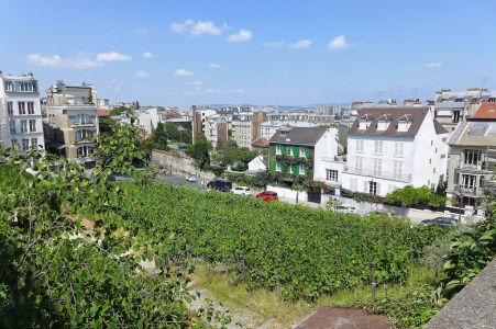 Musee de Montmartre - The vineyard, the Lapin agile and Northern Paris