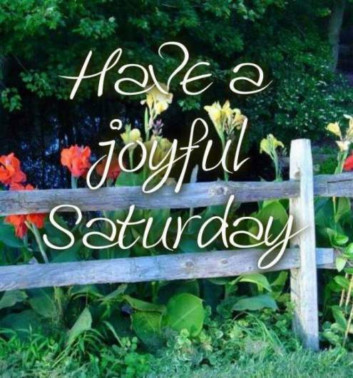 happy saturday quotes for pinterest