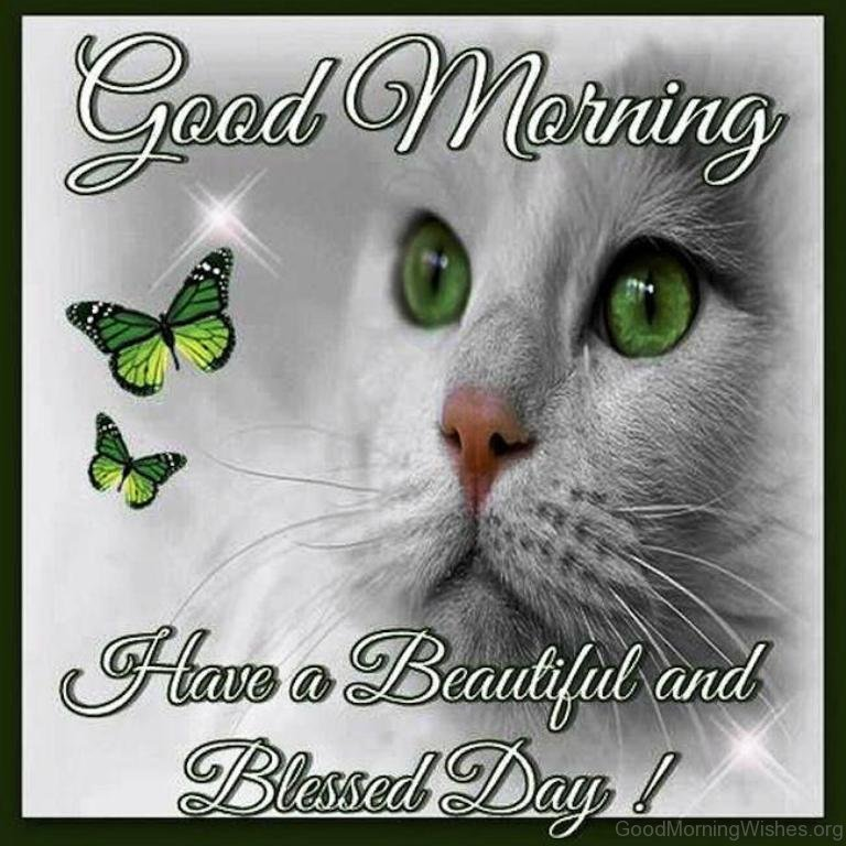 Have A Blessed Sunday Everyone Quotes Good Morning Have A
