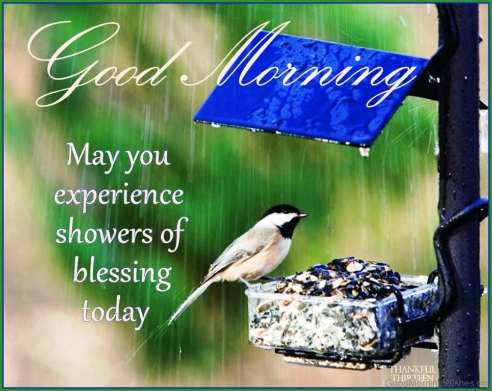 Rainy Good Morning Quotes