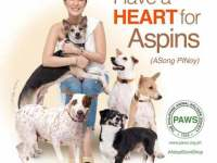 Heart Evangelista supports PAWS campaign for Asong Pinoy