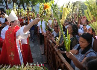 Palm Sunday Cardinal Tagle