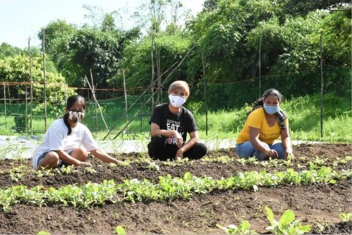 Lipa women sustainable vegetable livestock